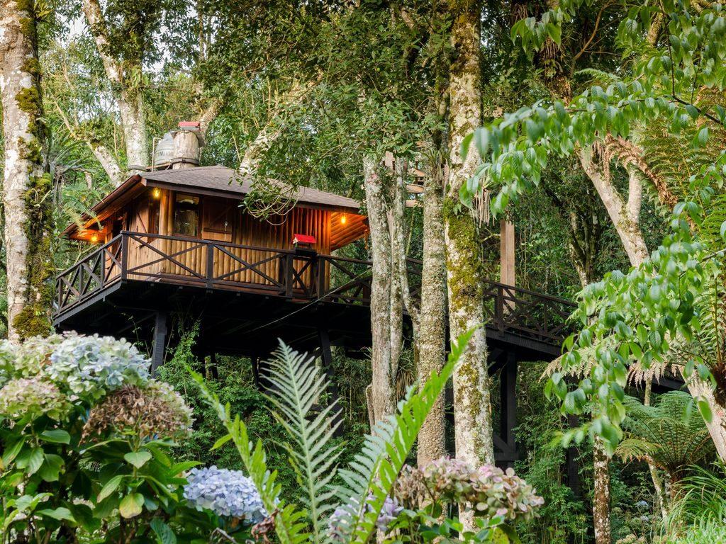 hotel-casa-na-arvore-brasil-3